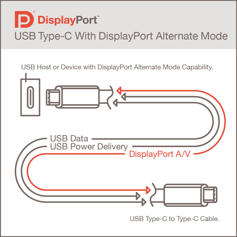 VESA Display Port USB Type-C